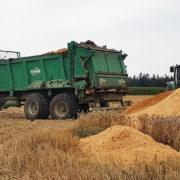 Den pH-Wert und die Bodenstruktur intakt halten: Kalkdüngung – Die Grundlage für sichere Erträge