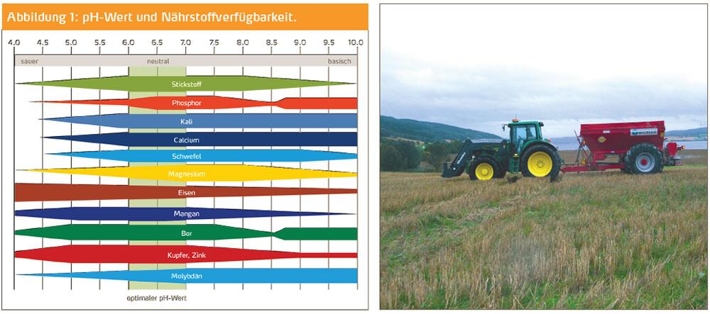 Abbildung 1: pH-Wert und Nährstoffverfügbarkeit.