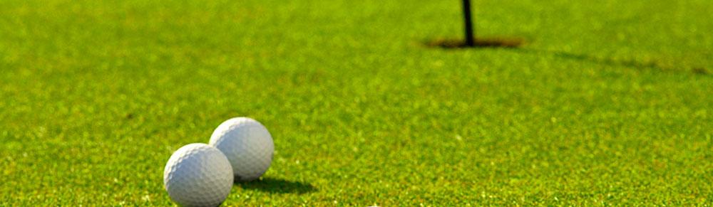 Rasen (Sport- und Golfplätze)