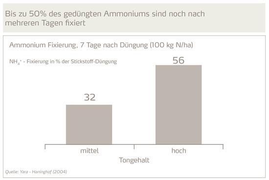 Bis zu 50% des gedüngten Ammoniums sind noch nach mehreren Tagen fixiert