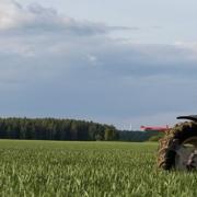 Abschlussgabe in Wintergerste - Jetzt die Bodenfeuchte nutzen