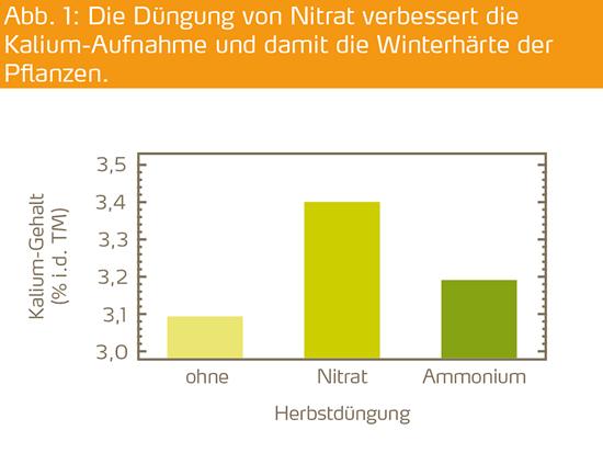 Die Düngung von Nitrat verbessert die Kalium-Aufnahme und damit die Winterhärte der Pflanzen.