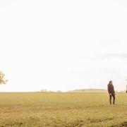 Rote Gebiete - Mit einer effizienten Düngestrategie Erträge sichern