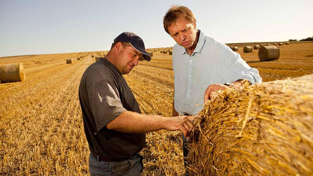 Getreidestroh-Mehr als nur Verkaufsprodukt